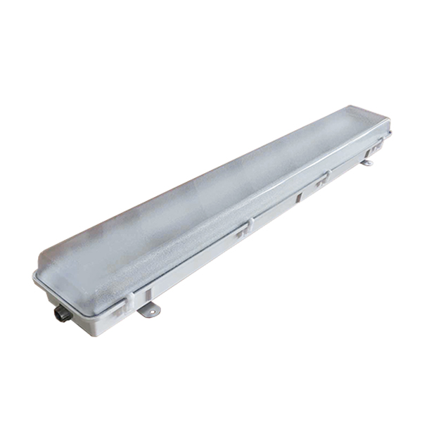 LENM  |  Non-Metallic LED Light Fixture