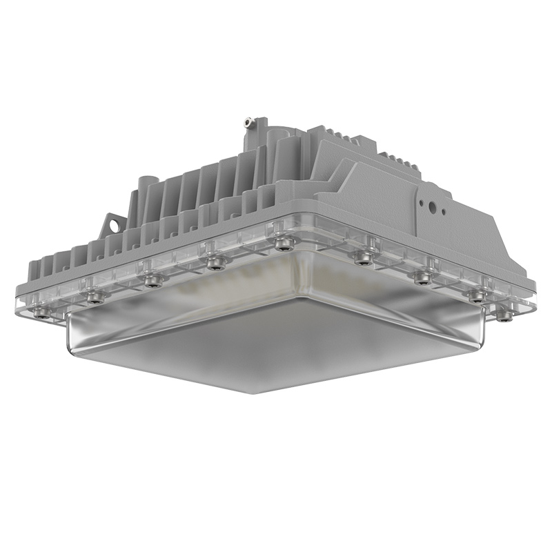 LEHF1  |  Hazardous Location LED Light Fixture